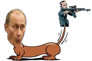 assad-dog-tail